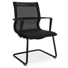 Hawk visitors arm chair