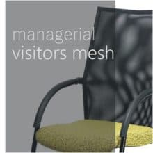 Managerial visitors - mesh backrest
