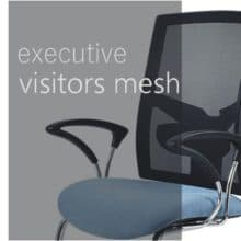 Executive visitors - mesh backrest
