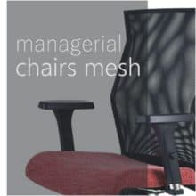 Managerial chairs - mesh backrest